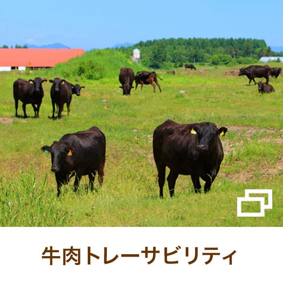 牛肉トレーサビリティ